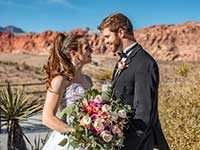Red Rock Weddings by Limo